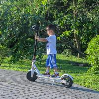 Wholesale EcoRider 2 Wheels Self Balancing Scooters 500W 8.5 Inch 36V Xiaomi Scooter Mobility from china suppliers
