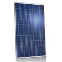 Wholesale Pool 250 Watt Polycrystalline Solar Panel36V Withstand High Wind Pressure from china suppliers