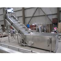 China Surfing Type Fruit Washing Machine , Commercial Fruit And Vegetable Washer Machine for sale