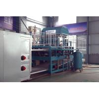 Wholesale Coal Fuel Type Paper Egg Tray Production Line High Speed 6000pcs/Hr from china suppliers