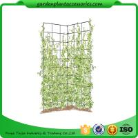 "Wholesale Two Panel Folding Screen Trellis , Garden Trellis Plant Support ​35-1/2"" W x 58"" H overall  Powder-coated steel from china suppliers"