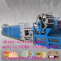 China pulp paper egg tray manufacturing machine for making paper trays on sale