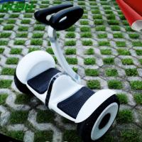 Wholesale Minirobot Smart Two Wheel Self Balancing Scooter Lithium  Battery from china suppliers