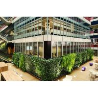 Wholesale HOT SALE Artificial green wall plants art plants wall plastic plant green wall decoration from china suppliers
