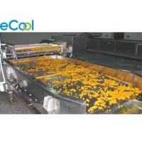 China Freon Refrigeration Multipurpose Cold Storage For Vegetables And Fruits 3000 Tons for sale
