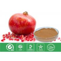 Wholesale Cosmetic Grade Natural Punica Granatum Extract Anti Oxidant / Descenting Blood Pressure from china suppliers