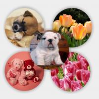 Wholesale 3d coaster Lenticular PET material 3d coaster from china suppliers