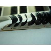 Individual false fake eyelashes ( eyelash extension / professional glue ) Y lash for sale
