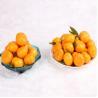 Citrus Fruit Guangdong Baby Gap Mandarin for sale