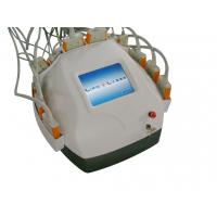 Wholesale Diode Laser Slimming Lipolysis Equipment SlimLipo , laser liposuction machine from china suppliers