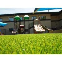 Wholesale Durable Small Garden Artificial Grass / Outdoor Fake Grass Oem Service from china suppliers