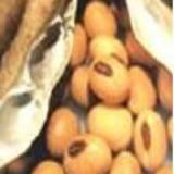 Wholesale Production Name:Soybean Extract from china suppliers