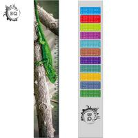 Wholesale High Definition Motion 3D Lenticular Ruler Animal Design For Students from china suppliers