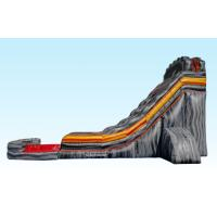 Wholesale Custom Made Gray Giant Inflatable Slide , Blow Up Water Slides For Adult from china suppliers