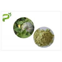 Wholesale Vegan Protein 50% 60% Natural Dietary Supplements Ecocert Certified Organic Pumpkin Seed Protein Powder from china suppliers