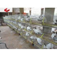 Buy cheap Wire Mesh Rabbit Cages for Rabbit Farm from wholesalers