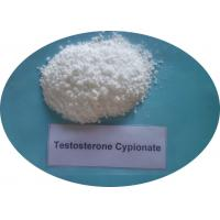 Wholesale Testosterone Cypionate CAS 58-20-8 Hormone Powder from china suppliers