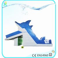 China water park amusement Inflatable Water Slides, dolphins slide for water park on sale