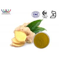 China Natural Chinese Ginger Root Extract 20 ~ 40% Gingerols improves blood circulation on sale
