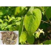Wholesale 489-32-7 Epimedium Extract Icariin from china suppliers