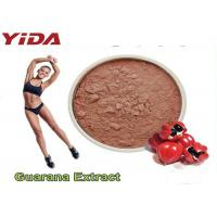 Wholesale Guarana Extract Natural Weight Loss Steroids 10% 20% Purity Reduced Appetite from china suppliers