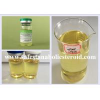 Buy cheap Bodybuilding Injectable Anabolic Steroids Liquid Testosterone Blend Sustanon 250mg/ml from wholesalers