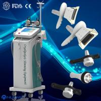 Wholesale Fat Freeze vacuum cavitation cryolipolysis Slimming Machine/ equipment  for body slimming from china suppliers