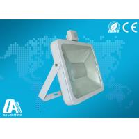 Wholesale White 100W COB Led Flood Light Motion Sensor High Lumen 90lm / w With CE from china suppliers