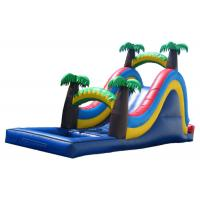 Wholesale Blue  Inflatable Large Water Slide For Kids Coconut Tree Type from china suppliers