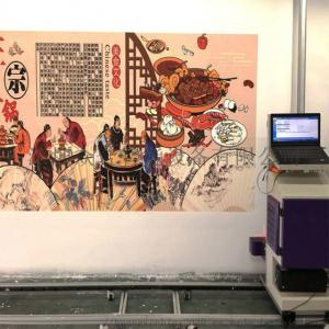 Wholesale CMYK 12㎡/h 720X1080DPI 400ml ink wall painting machine from china suppliers