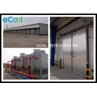 China Intelligent Control Cold Storage Of Fruits And Vegetables For Fruit Juice for sale