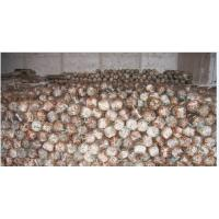 Wholesale Dried Shiitake Mushroom Spawn from china suppliers