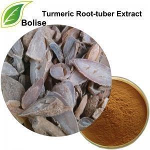 Wholesale Turmeric Dried Root Tuber Curcuma Wenyujin Y. Radix Curcumae Extract from china suppliers