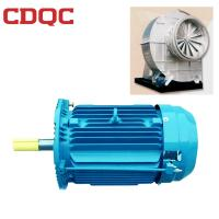 China Variable Frequency High Temperature Electric Motor Class F Insulation 60hp for High Temperature Fan on sale