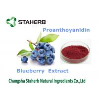 Wholesale Blueberry extract Antioxidant Dietary Supplement proanthoyanidin 25% for cosmetic from china suppliers