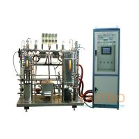 China AC Motor Lab Scale Fermentor , Magnetic Stirred Industrial Bioreactors for sale