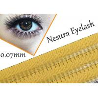 Wholesale Pro Natural C Curl 0.12mm 8/10/12mm Black Individual False Eyelashes 3d 4d 5d Silk Eyelash from china suppliers
