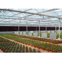 Wholesale UV Treated Multi Span Woven 200 Micron Reinforced Greenhouse from china suppliers