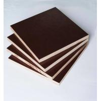 Wholesale Film Faced Poplar Plywood For Cabinets , Decorative Plywood Sheets Anti Wear from china suppliers