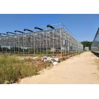 Wholesale Integrated Tunnel Polycarbonate Agricultural Greenhouse from china suppliers