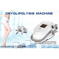 Buy cheap Portable Cryolipolysis Slimming Machine , Mini Cryotherapy Fat Freezing Device from Wholesalers