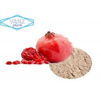 China Natural Herbal Extracts  pomegranate peel extract ellagic acid on sale