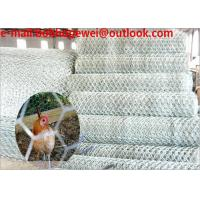 Wholesale black plastic poultry net/coated poultry netting/poultry netting wire/2m chicken wire/buy chicken wire fence/chicken kit from china suppliers