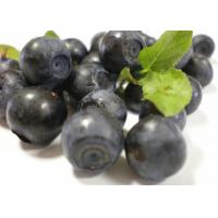 Wholesale Skin Care Bilberry Fruit Powder , Organic Fruit And Vegetable Powders Trace Element from china suppliers