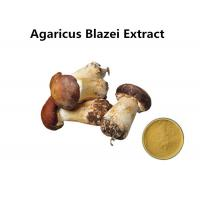 Wholesale Agaricus Blazei Extract Promoting Hematopoiesis , Ji / Pine Medicinal Mushroom Powder from china suppliers