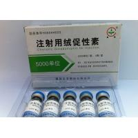 Wholesale Natural Human Chorionic Gonadotropin HCG Purity for Body Building from china suppliers