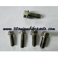 Wholesale Hex Head Titanium Bolt For Racing Industries racing titanium bolt Gr5 from china suppliers