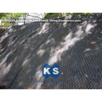 Wholesale Hexagonal Wire Netting Gabion Basket Retaining Wall Coated Polyethylene PE Gabion Boxes from china suppliers