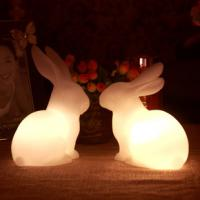 China animal night light/rabbit/gift/homemade christmas gifts/wedding/valentines day gifts/ on sale
