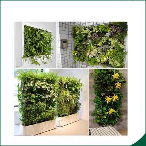 Wholesale 56 Pocket Planter Bag Garden Hanging Vertical Planter Bag Indoor Outdoor Herb Pot Decor from china suppliers